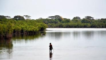 Guinea Bissau – 2455876600