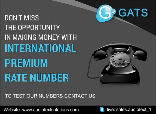 How to make money with International Premium Rate Numbers?